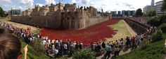"""""""Blood Swept Lands and Seas of Red"""" 888,246 ceramic poppies being planted around the Tower of London by artist Paul Cummins assisted by a small army of volunteers."""