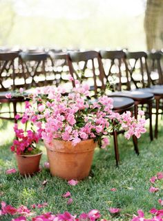 Potted plants down the aisle would be beautiful.  We could plant with sweet peas that would smell great and be pretty.  My good friend has a huge greenhouse that I could use.