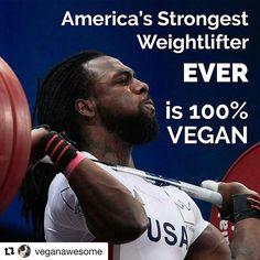 #Repost @veganawesome with @repostapp ・・・ @Regrann from @the_undisputable_vegans…