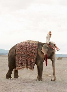 All dressed nowhere to go- elephant love Adventure Awaits, Adventure Travel, Elephas Maximus, Wanderlust, Elephant Love, Elephant India, To Infinity And Beyond, Adventure Is Out There, Oh The Places You'll Go