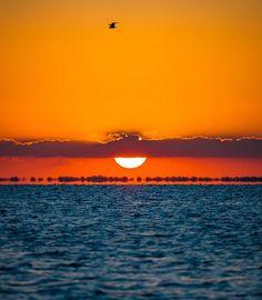 #305 #miami #southflorida #florida #floridalife #sunrise #sunriselovers #sunrise and sunsets #sun #s - file.army