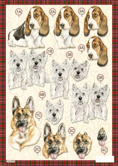 CHIENS 3D Newspaper Crafts, 3d Paper Crafts, Image 3d, 3d Dog, Decoupage Printables, 3d Sheets, Dog Died, Wire Jewelry Designs, Bassett Hound