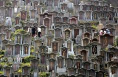 Worshippers clean the graves of their ancestors at a cemetery during Chung Yeung festival in Hong Kong. During the festival, many people visit the graves of family members to perform cleansing rites and pay their respects Cemetery Headstones, China Travel, Haunted Places, Memento Mori, The Guardian, Hong Kong, Skyline, Street View, City