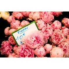 * French Market Fragrant Pink Peonies *.  I was there.  Sooooo beautiful
