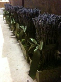 hand-made dried lavender topiaries I made - ready for a wedding