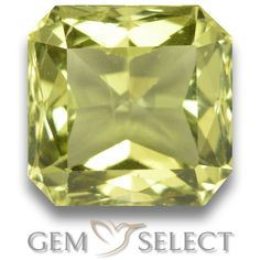 GemSelect features this natural untreated Apatite from Madagascar. This Green Apatite weighs 3.1ct and measures 8.1 x 7.9mm in size. More Octagon / Scissor Cut Apatite is available on gemselect.com #birthstones #healing #jewelrystone #loosegemstones #buygems #gemstonelover #naturalgemstone #coloredgemstones #gemstones #gem #gems #gemselect #sale #shopping #gemshopping #naturalapatite #apatite #greenapatite #octagongem #octagongems #greengem #green Green Gemstones, Loose Gemstones, Natural Gemstones, Buy Gems, Gem S, Gemstone Colors, Madagascar, Shades Of Green, Stone Jewelry