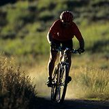 Mountain Bike Trails in Scotland - The 7stanes Trails