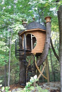 Spiraling treehouse. Beautiful workmanship. Not too high up either.