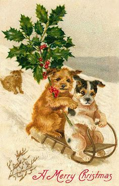 Vintage Holiday Graphics: CHRISTMAS CARDS FEATURING DOGS