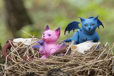 Strange nestlers | by walloyamorring