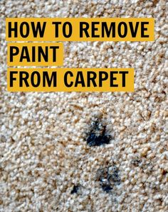 How to Remove Paint from Carpet from Rachel Schultz
