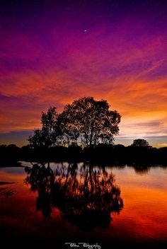 """20 Amazing Pictures of Sunset with Quotes 