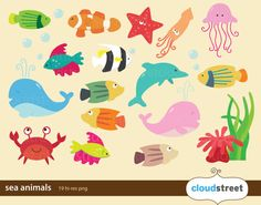 buy 2 get 1 free sea animal clip art for personal and commercial use ( ocean animal clipart ) INSTANT DOWNLOAD