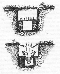 Punji Bear Trap | This booby trap was also invented by the Viet Cong #survivallife www.survivallife.com