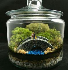 Captivating Zen Terrarium Fisherman Terrarium Japanese By TerraSphereTerrarium