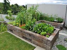 Image result for vegetable garden design nz