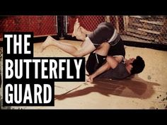 The Butterfly Guard.