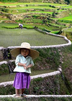 Small girl on the rice terraces in the Philippines~ The terraces are one of the wonders of the World. We Are The World, Small World, People Around The World, Wonders Of The World, Around The Worlds, Precious Children, Beautiful Children, Beautiful People, Beautiful Places