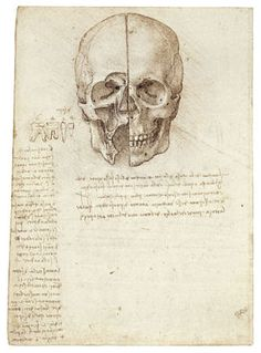 Leonardo da Vinci - Dibujos de anatomía humana: Un craneo seccionado, 1489.