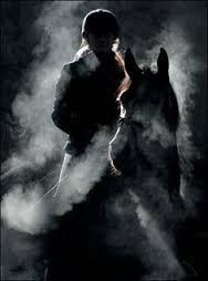 Paard / rook
