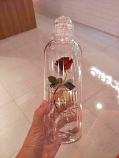 Beauty and the Beast - Rose Bottle Starbucks Logo, Starbucks Tumbler, Starbucks Bottles, Girly Things, Cool Things To Buy, Stuff To Buy, Disney Cups, Sally Nightmare Before Christmas, Cute Water Bottles
