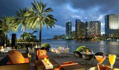 #baía,+#Flórida,+#Miami,+#tabelas,+#palmeiras,+#cidade,+#Oceano,+#EUA,+#café
