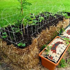 Straw bale gardening, this is a must try.