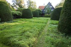 straight lines cut through the tall grass.inexpensive way to extend landscape architecture a long ways. Per Fribergs trädgård - Geometri Landscape Architecture, Landscape Design, Garden Design, Formal Gardens, Topiary, Garden Inspiration, Beautiful Gardens, Stepping Stones, Minimalism