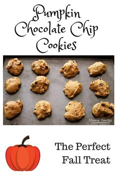 This pumpkin chocolate chip cookie recipe is my absolute favorite! It makes the perfect fall comfort food. Pumpkins and autumn go together. Check out the fun pumpkin kids activities at the end of this post! Chip Cookie Recipe, Cookie Recipes, Snack Recipes, Dessert Recipes, Desserts, Sandwich Recipes, Healthy Recipes, Picnic Foods, Picnic Snacks