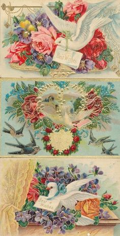 Lot of 3 Greetings Postcards all with * Beautiful DOVES & BIRDS~vintage -ttt353