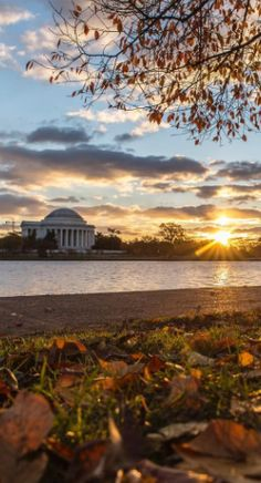 11 Spectacular Photos of Fall Foliage in Washington DC #UpOutDC