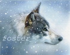 wolf art wolf print wolf painting wildlife animal by lewfoster