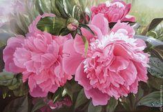 """Купить картина маслом """"Пионы розовые"""" - лето, цветок, розовый, нежный, лепестки, пионы"""