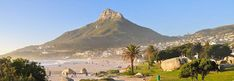 If you are Cape Town Tours and Activities For Everyone Visiting South Africa! The City Of Cape Town, South Africa's … Visit South Africa, Outside Activities, Local Tour, Cape Town, Tanzania, The Locals, Safari, Tours, City