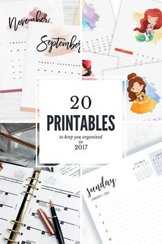 20 Free Printables to Stay Organized in 2017 // Planner Inserts, Calendars, Daily Agenda