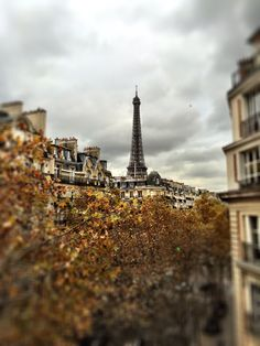 Eiffel Tower- view from our apartment Photo taken by Andrea Duffy  November 2014