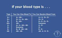 Bluttypen