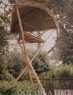 Muenning's Treehouse