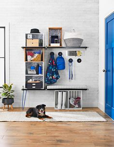 Garage Storage, Storage Organization, Better Homes And Gardens, Fleas, Getting Organized, Storage Solutions, Paint Colors, Home Improvement, Home And Garden