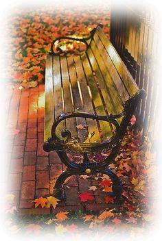 banc de parc automne