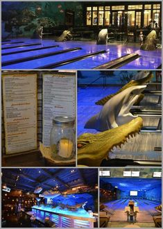 Only at Uncle Buck's Fishbowl Destin, FL you can bowl in the ocean! This unique dining concept has 16 full lanes of bowling that offer an extraordinary underwater experience that is geared for family fun! Hand painted murals and fish hanging from the cei Destin Florida Vacation, Destin Beach, Florida Travel, Florida Beaches, Beach Trip, Destin Florida Activities, Miramar Beach Florida, Navarre Beach Florida, Santa Rosa Beach Florida