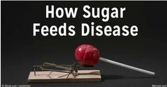 Author and educator Gary Taubes is among a small group of health investigators who have been relentlessly spreading the word about the strong associations between sugar consumption and the rising rates of obesity and major diseases such as diabetes, cancer, heart disease, and Alzheimer's.