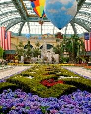 Bellagio Conservatory and Botanical Gardens in Las Vegas.