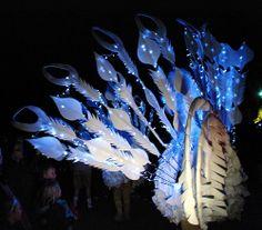 3.10.09 09 Manchester Diwali Lantern Parade 25, Peacock Lantern