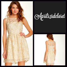 "A-Line Party Tank Dress Lace Cocktail Gold NEW WITH TAGS  RETAIL PRICE: $98   Jack by BB Dakota For Anthropologie Party Dress Lace Overlay Gold Ivory A-line Cocktail   * Fit-and-flare style w/back zipper closure   * Eyelet Lace overlay style; Lined   * Embroidered gold details   * Measure about 33"" long; Tagged size 6 (M)   * Boat neck front   * Vintage feel. Fabric: 100% Polyester Color: Ivory Gold Combo   No Trades ✅ Offers Considered*/Bundle Discounts✅  *Please use the 'offer' button to…"