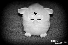 The new 2012 Furby looks like a big upgrade from the one I had as a kid! http://www.surfandsunshine.com/2012-furby-review/