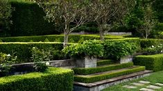 First impressions count, so when it comes to upping your home's kerb appeal, why not grow a lush, green, front garden? Here's 18 ideas to start with. Australian Plants, Australian Garden, Coastal Gardens, Small Gardens, Lush Garden, Garden Beds, Garden Shrubs, Silver Plant, Garden Design Ideas