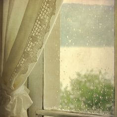 Spring Rain  #rain #life