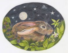 People Art, Rabbit, Decorative Plates, September, Contemporary, Drawings, Illustration, Pictures, Instagram