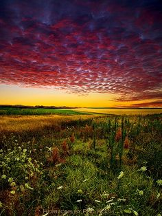 prairie ...Oh, to know the photographer and location of this glorious image!...